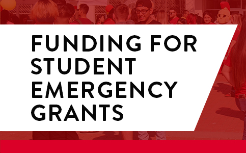 Emergency Grants Icon